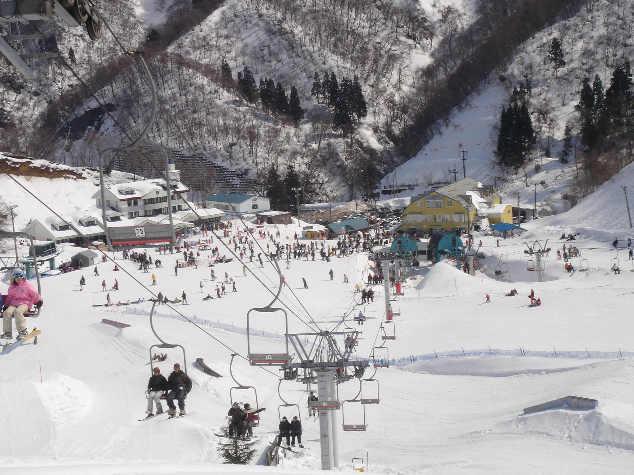 スキー 余呉 場 高原