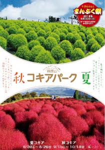 いよいよ6月30日からびわこ箱館山ゆり園がオープン!!